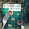 イケアのプラントボールを食べてみた!   にわか明太子の画像