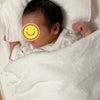 姪の赤ちゃんの画像