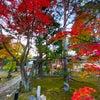 銀座ママの京都散歩 中村屋さんのコロッケ♡全国パワースポット今週は京都と和歌山の画像