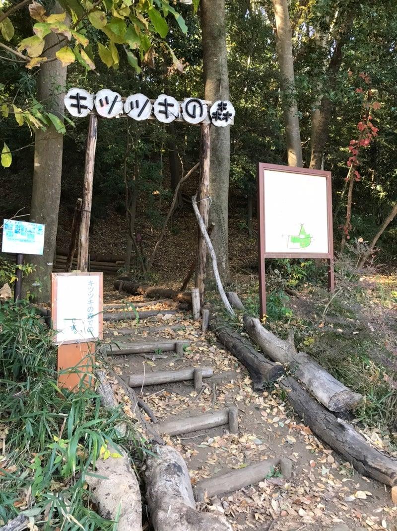 o1078144014854724497 - ♡11月21日(土) toiro藤沢♡