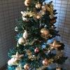 クリスマスツリー☆☆☆の画像