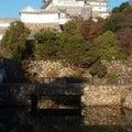今日はオペラ記念日、進化、鰹節の日~似非保守ウヨウヨが日本を滅ぼす!?