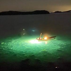 夜の魚の画像