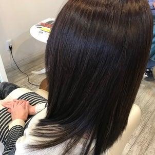 髪がパサパサする原因は色々なんです。の画像