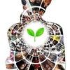 自我同一性の確立の重要性|コスモ・ライフォロジーの画像
