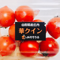 あいぼんのトマトブログ「トマトで美と健康を手に入れよう!」