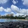 ハワイトラベルブログ Pt. 3:ホノルルの現状の画像