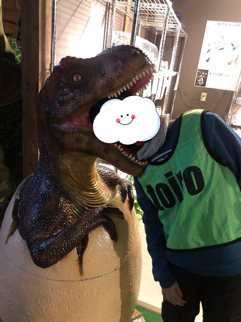 o1080144014857689767 - ◎11月23日(月) toiro東戸塚 太古ダイナソーレストラン◎