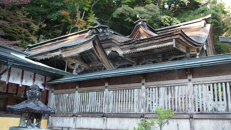 大矢田神社もみじ谷2020-7