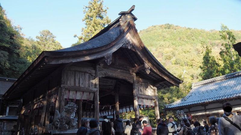 大矢田神社もみじ谷2020-8