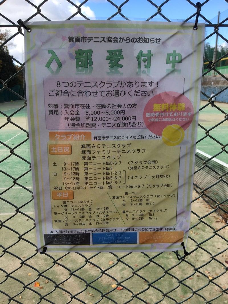 大阪 テニス オフ