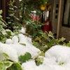 雪が降った日&街中パトロール&新メニューの画像