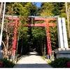 來宮神社 withワンコの画像