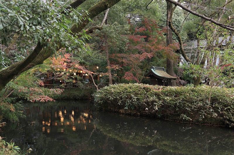 深大寺亀島弁財天池のお堂と青木屋さんの前の紅葉