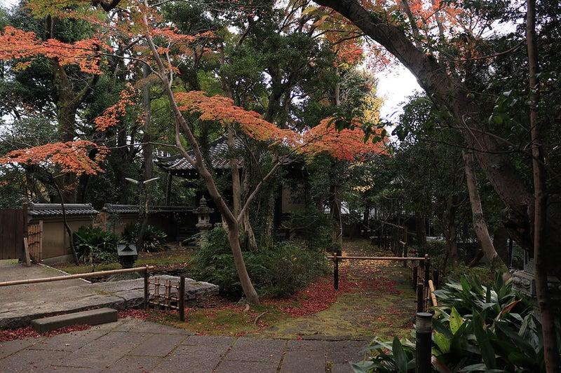調布大正寺の境内の紅葉