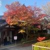 華頭窓からこんにちは〜〜!!@京都の画像