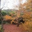 京都旅行に行ってきました……長いので適当に流し読みしてください。