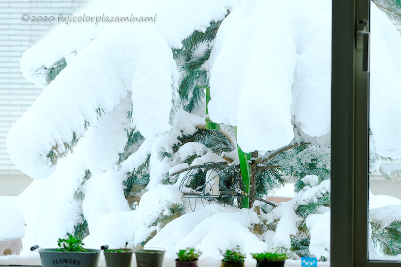積雪 岩見沢