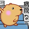ribiのきゃぴばらブログ