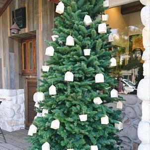 ロミユニコンフィチュールのクリスマスを楽しむ♪の画像