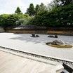 改修工事中で残念な金閣寺から、石庭が美しい龍安寺へと歩く☆関西周遊旅行記⑦【2020.9.16】