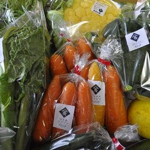 お野菜もりもり!!の画像