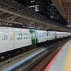【最後の活躍を追う・国鉄特急型185系⑦】堂々の15両長大編成☆185系湘南ライナー