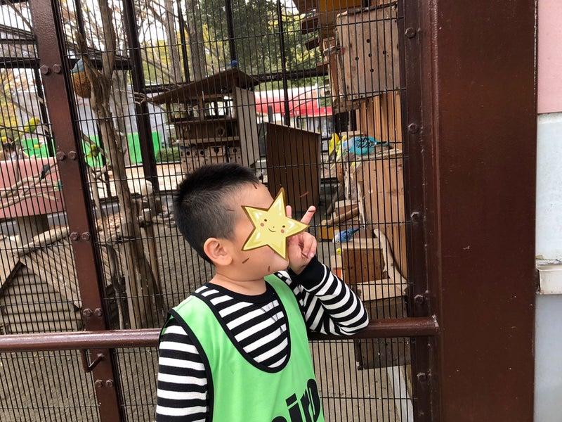 o1080081014861042357 - ♪11月28日(土)♪toiro戸塚