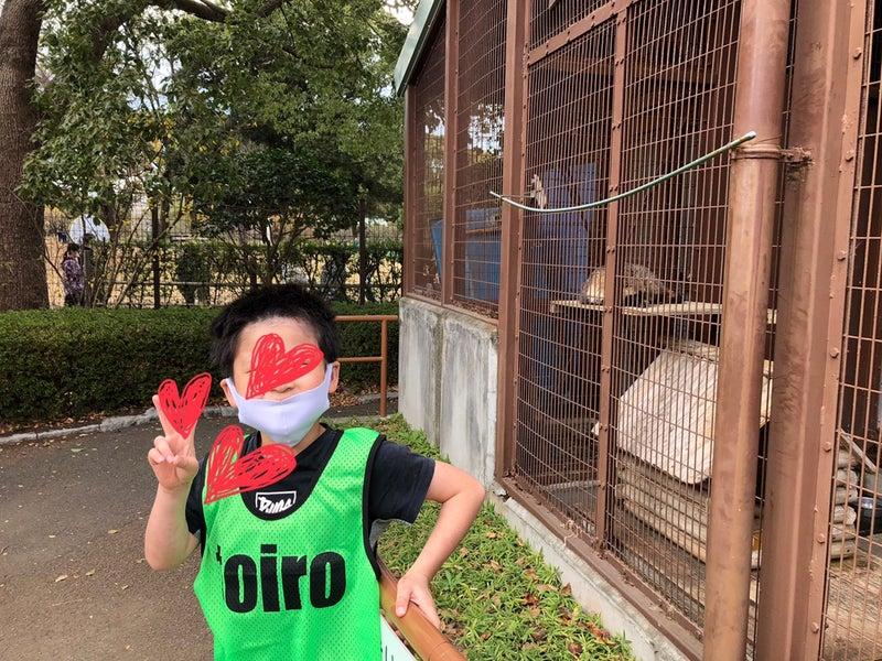 o1080081014861042364 - ♪11月28日(土)♪toiro戸塚