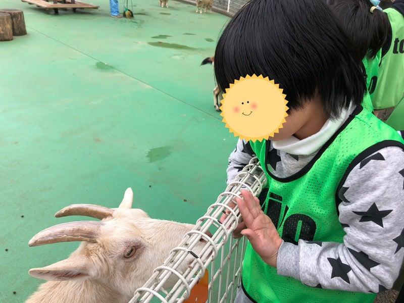 o1080081014861042348 - ♪11月28日(土)♪toiro戸塚