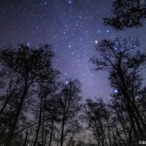 息をのむ美しい星空! 敦賀市の池河内湿原で星を見てきました!の画像