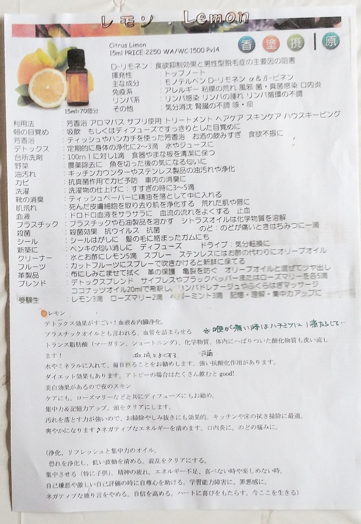 二股 池田 エライザ 池田エライザ ダブル二股疑惑の噂(改良版)