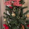 レンタルスペースにクリスマスツリーを飾ってきましたの画像