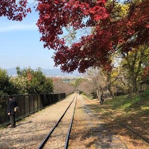 秋の京都へ~ひとり旅第3弾⑤の画像