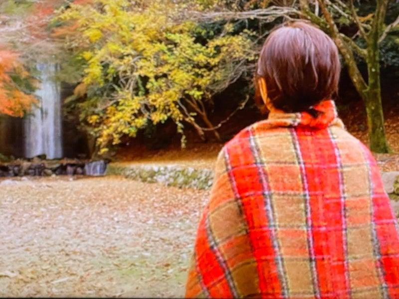 住ん で 京都 に みた ちょこっと