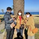 2020.12.6 ご宿泊のワンちゃん達の笑顔☆の記事より