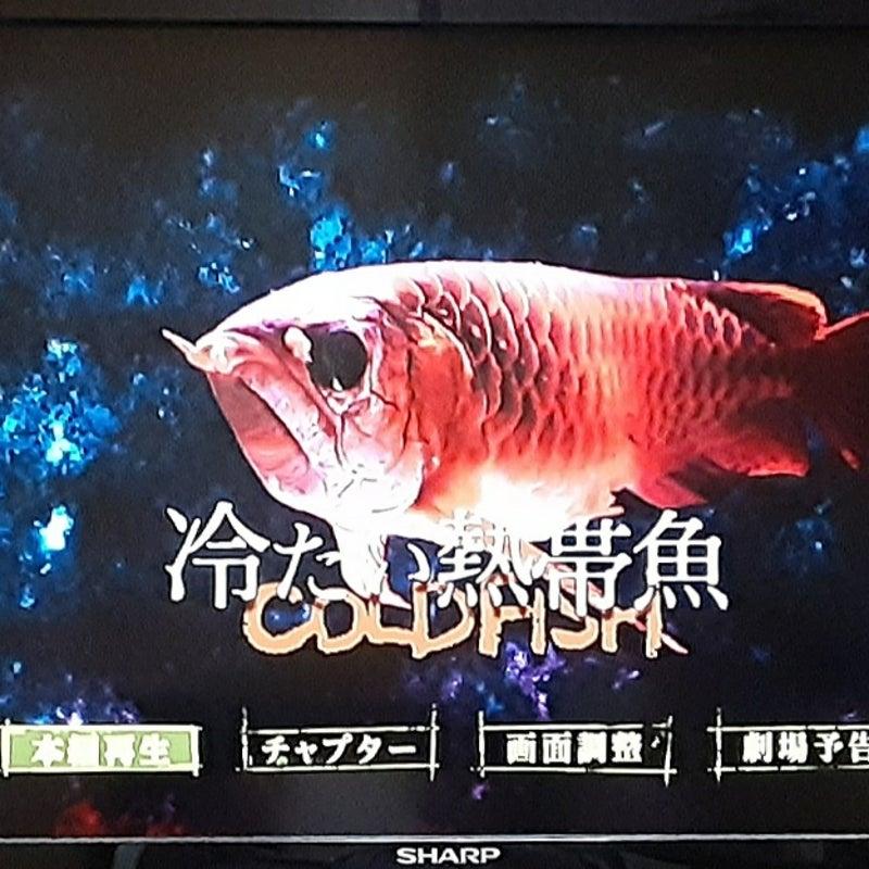 熱帯魚 考察 冷たい