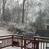 雪降ってる12月の画像