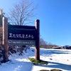 奥志賀高原の画像