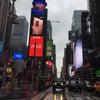 こんな時期にニューヨーク!の画像