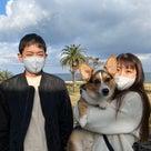 2020.12.12   ご宿泊のワンちゃん達の笑顔♪の記事より