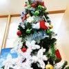 クリスマスムード全開☆彡の画像