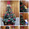 生徒さんにクリスマスツリーの飾り付けをしてもらいました(^o^)の画像