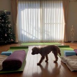 Peace&Peace Yogaの画像