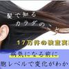 毛髪ミネラル検査の画像
