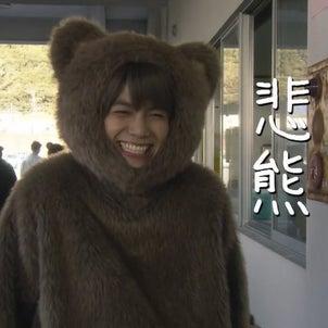 とんでもカワイイドラマ誕生!悲熊(ひぐま)の画像