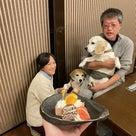 2020.12.18 ご宿泊のワンちゃん達の笑顔☆の記事より