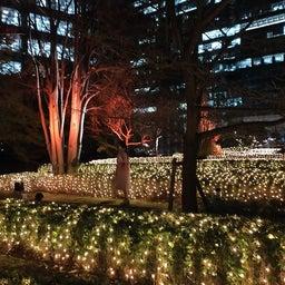画像 【プライベート記事】年末に『The Okura Tokyo』に宿泊してきました① の記事より 53つ目