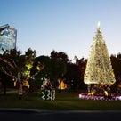 12月23日水曜日のイルミネーションランについてお知らせの記事より