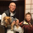 2020.12.21 ご宿泊のワンちゃん達の笑顔☆の記事より